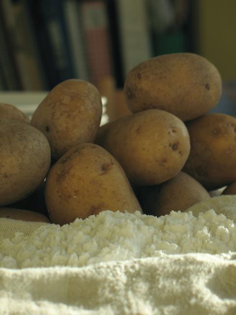 Sodium Starch Glycolate Type A Potato