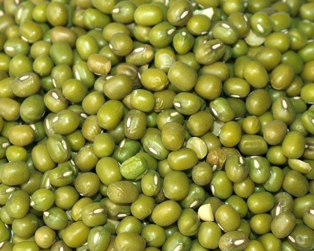 Mung bean (Vigna radiata) | Feedipedia