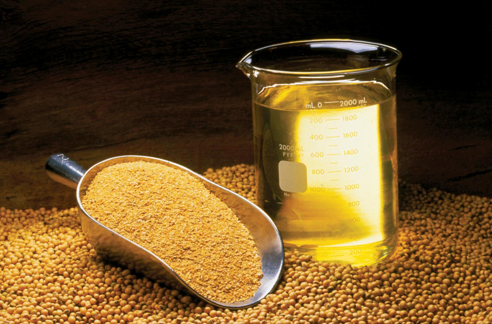 Soybean meal | Feedipedia