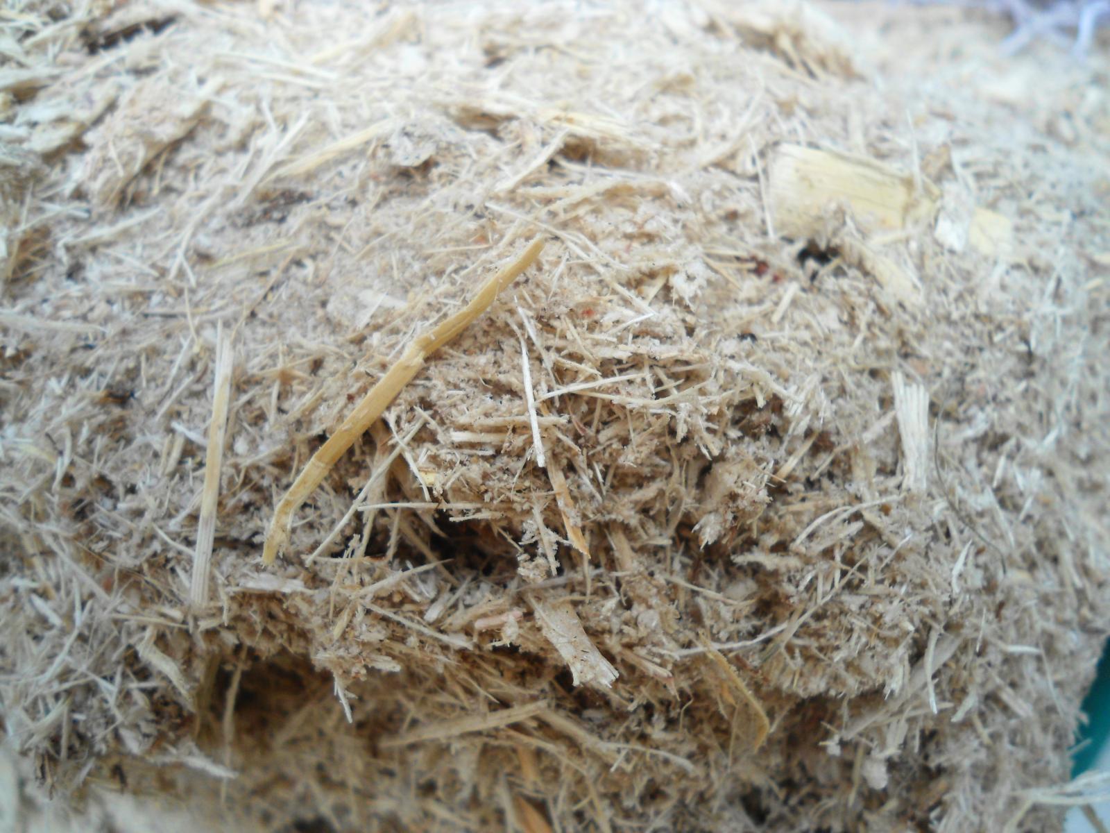 Sugarcane Bagasse Feedipedia