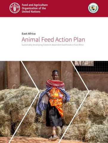 Animal Feed Action Plan. FAO and IGAD 2019