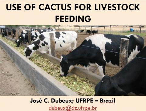 Dubeux, 2011. Use of cactus for livestock feeding