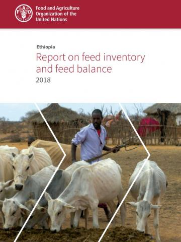Ethiopia: feed inventory