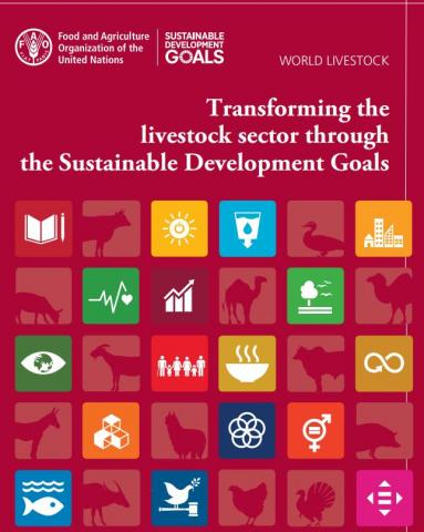 World livestock: Transforming the livestock sector through the Sustainable Development Goals