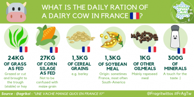 Daily ration of a French dairy cow (Credit: @Agrikol)