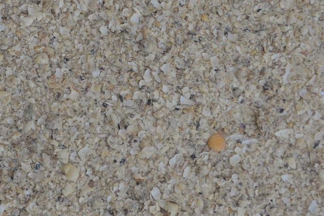 Soybean hulls in bulk