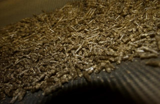Pellets of dehydrated sugar beet pulp