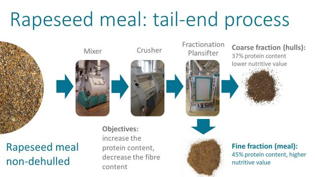 Tail-end processing of rapeseed meal