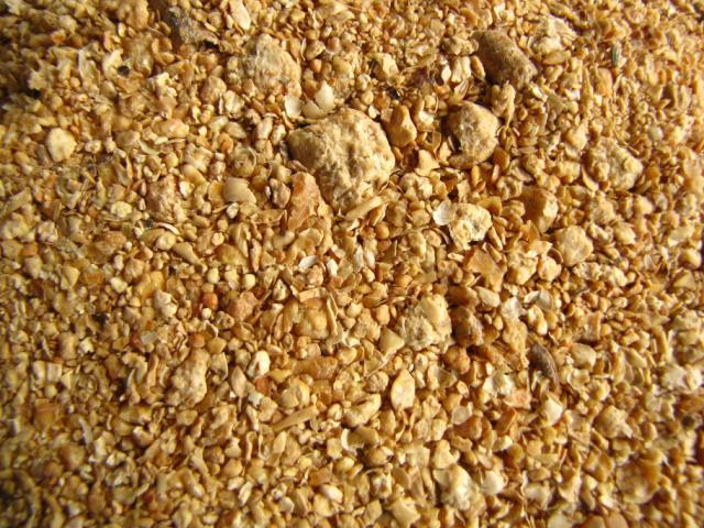 Soybean meal, imported in France
