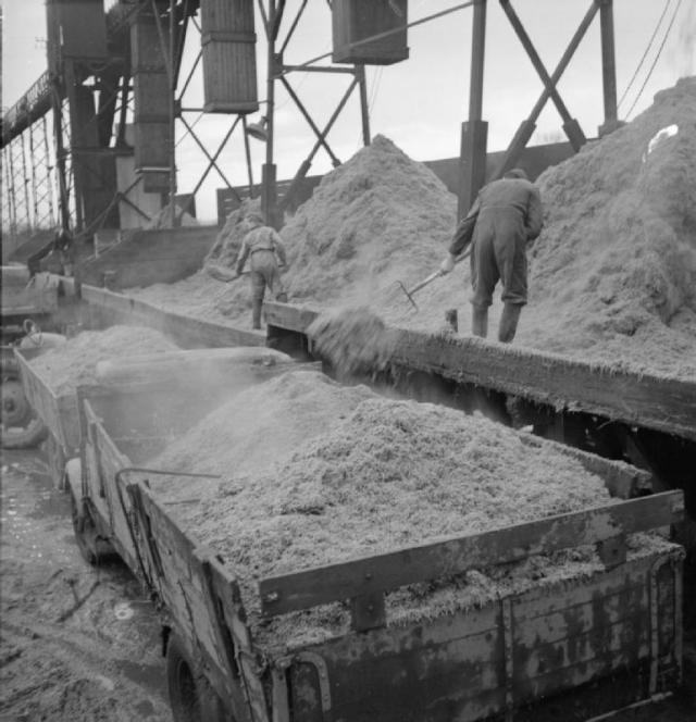 Sugar beet pulp loading at the sugar factory